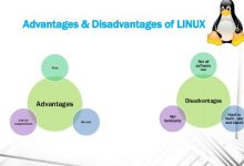 Photo of Some Best Benefits & Disadvantages Of Linux OS